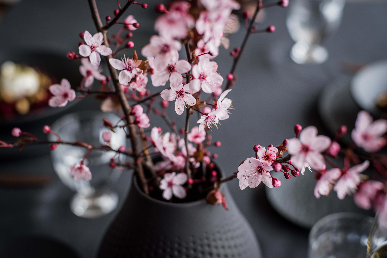 Kirschblütenzweige Deko